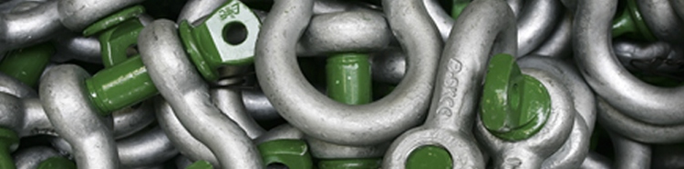 Van Beest Green Pin Shackles